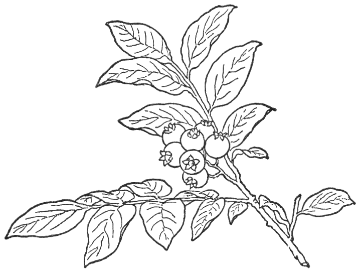 Talk Coloring Page Printable