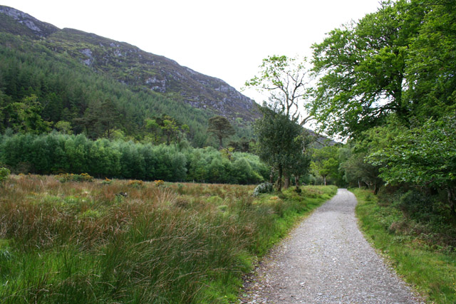 Old Kenmare Road by Barnancurrane - geograph.org.uk - 450515