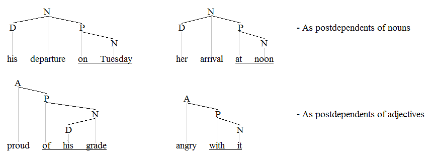 PPs on nouns and adjectives