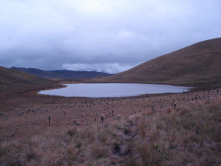 Parque de los nevados Tolima 02