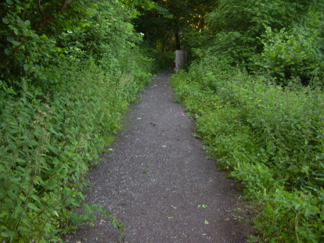 Path to Thornley Woodlands Centre - geograph.org.uk - 853961