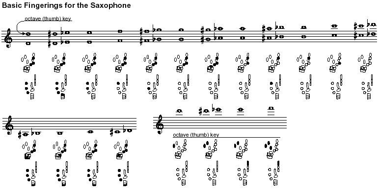 Saxophone technique wikipedia ibookread PDF