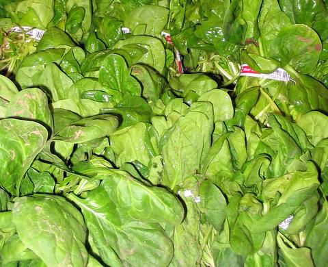 Spinach produce-1.jpg