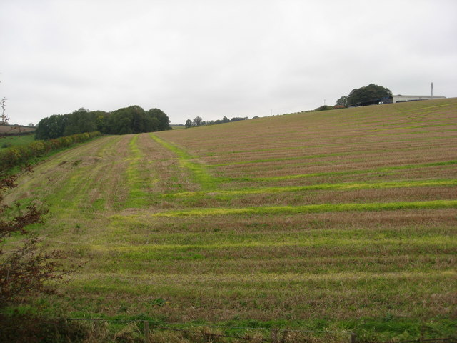 Teversal Trail - View across fields - geograph.org.uk - 1001442