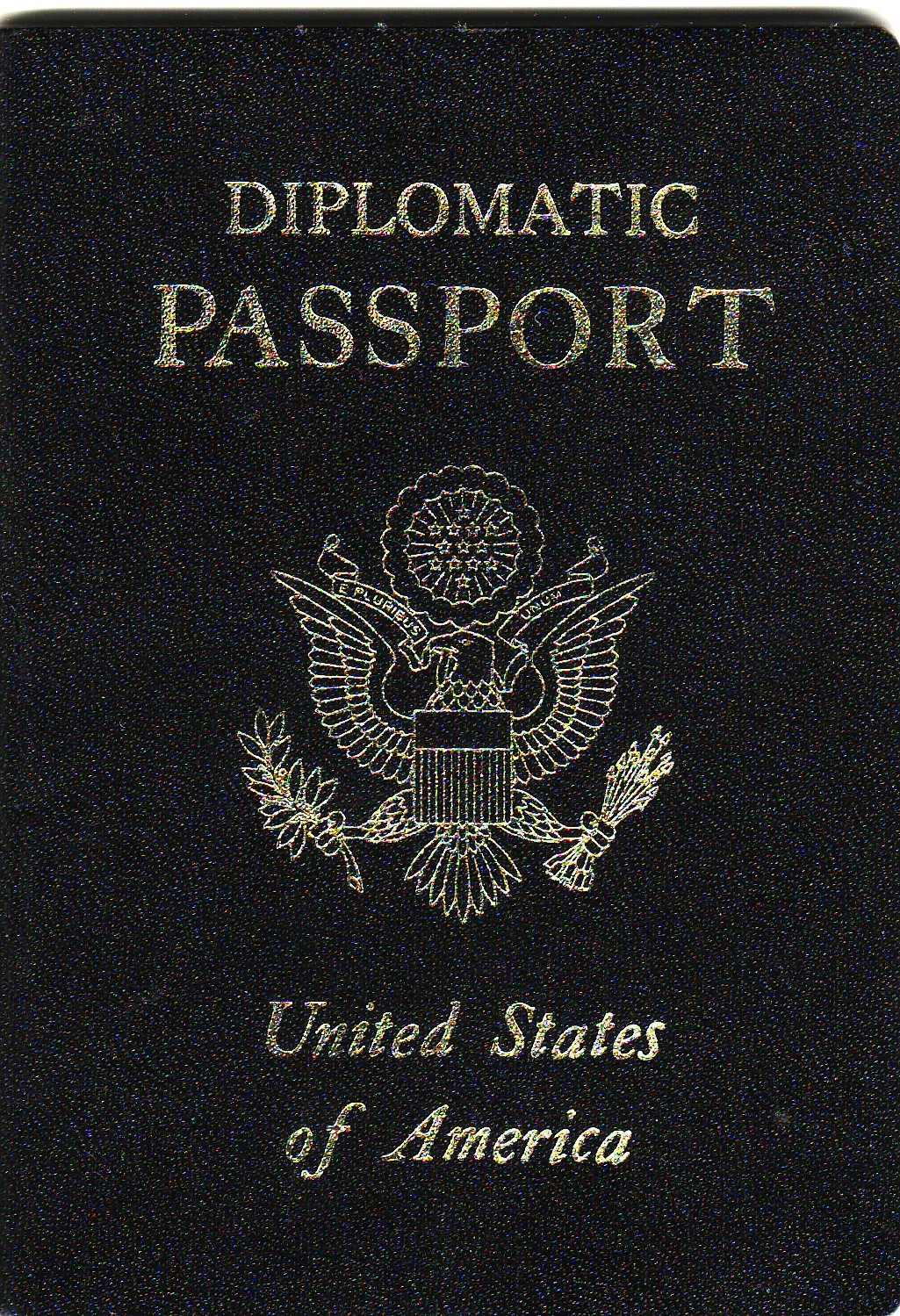 http://upload.wikimedia.org/wikipedia/commons/3/36/US_Diplomatic_Passport.JPG