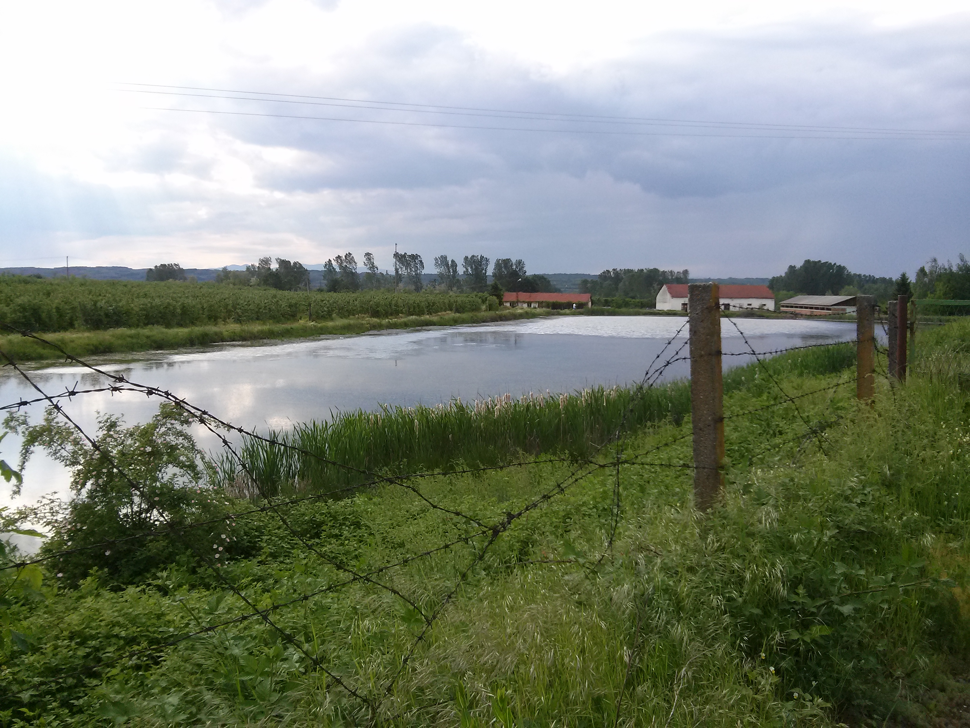 File:Veštačko jezero, Beli Potok 03.jpg