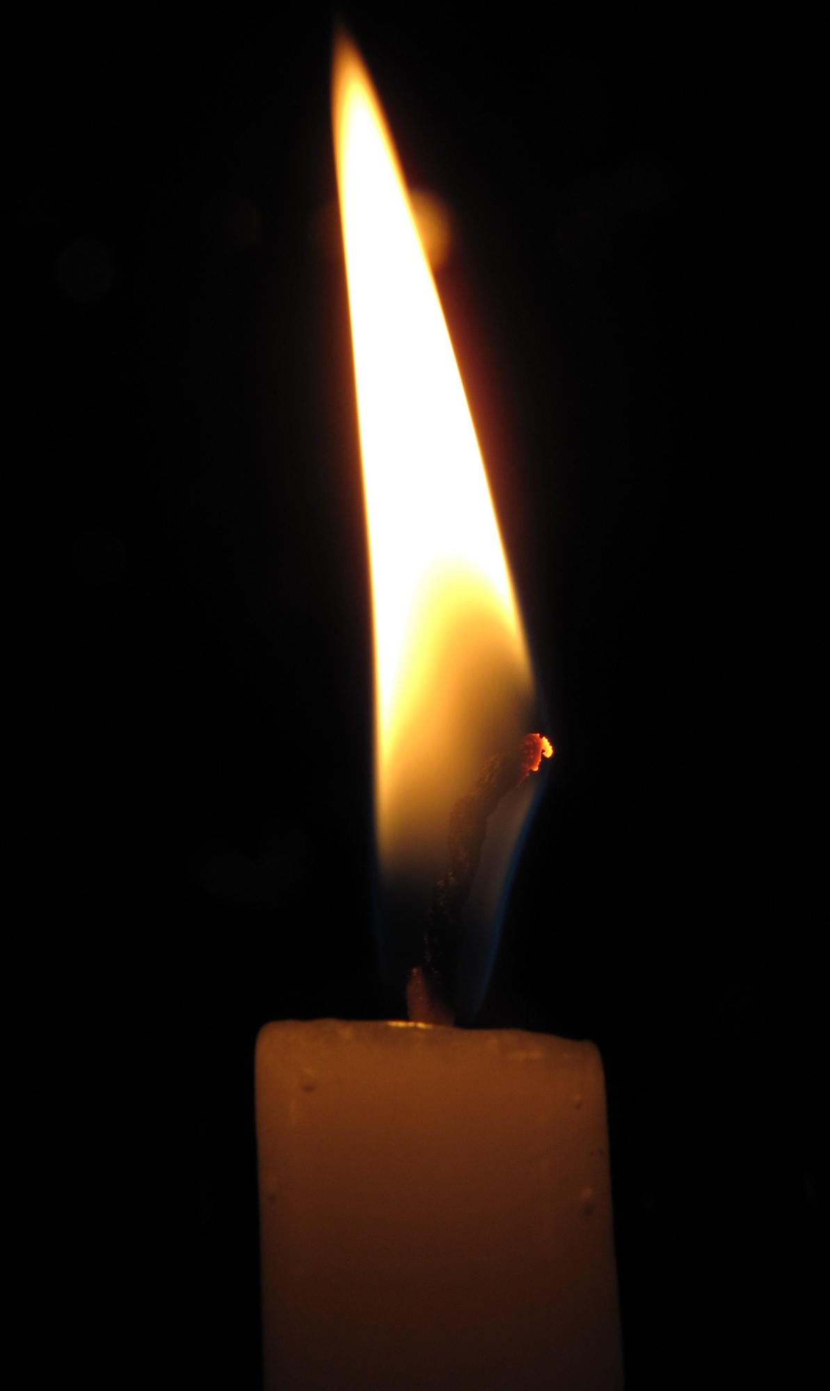 candle in the dark - photo #31