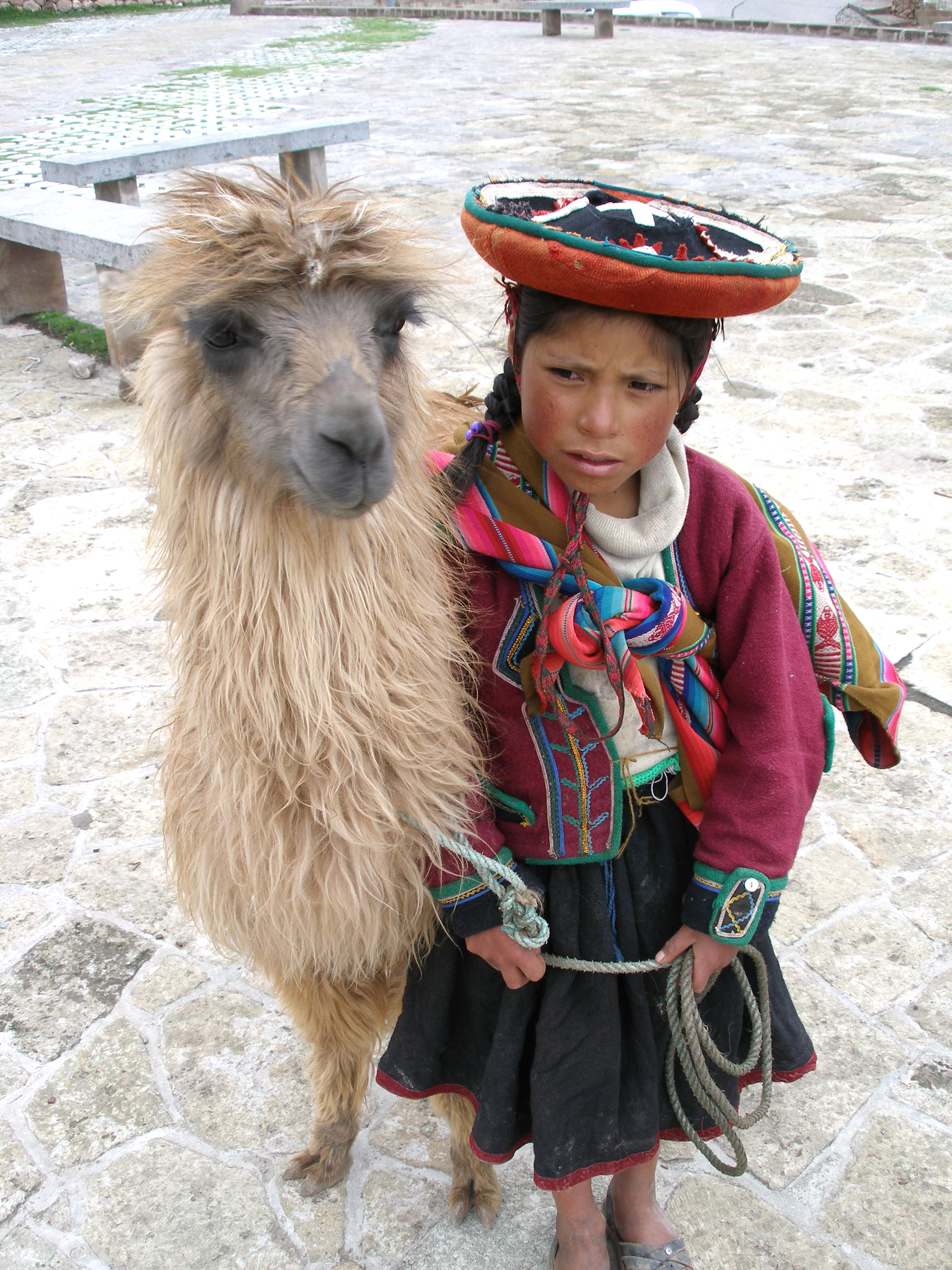 File A Quechua Girl And Her Llama Jpg Wikimedia Commons