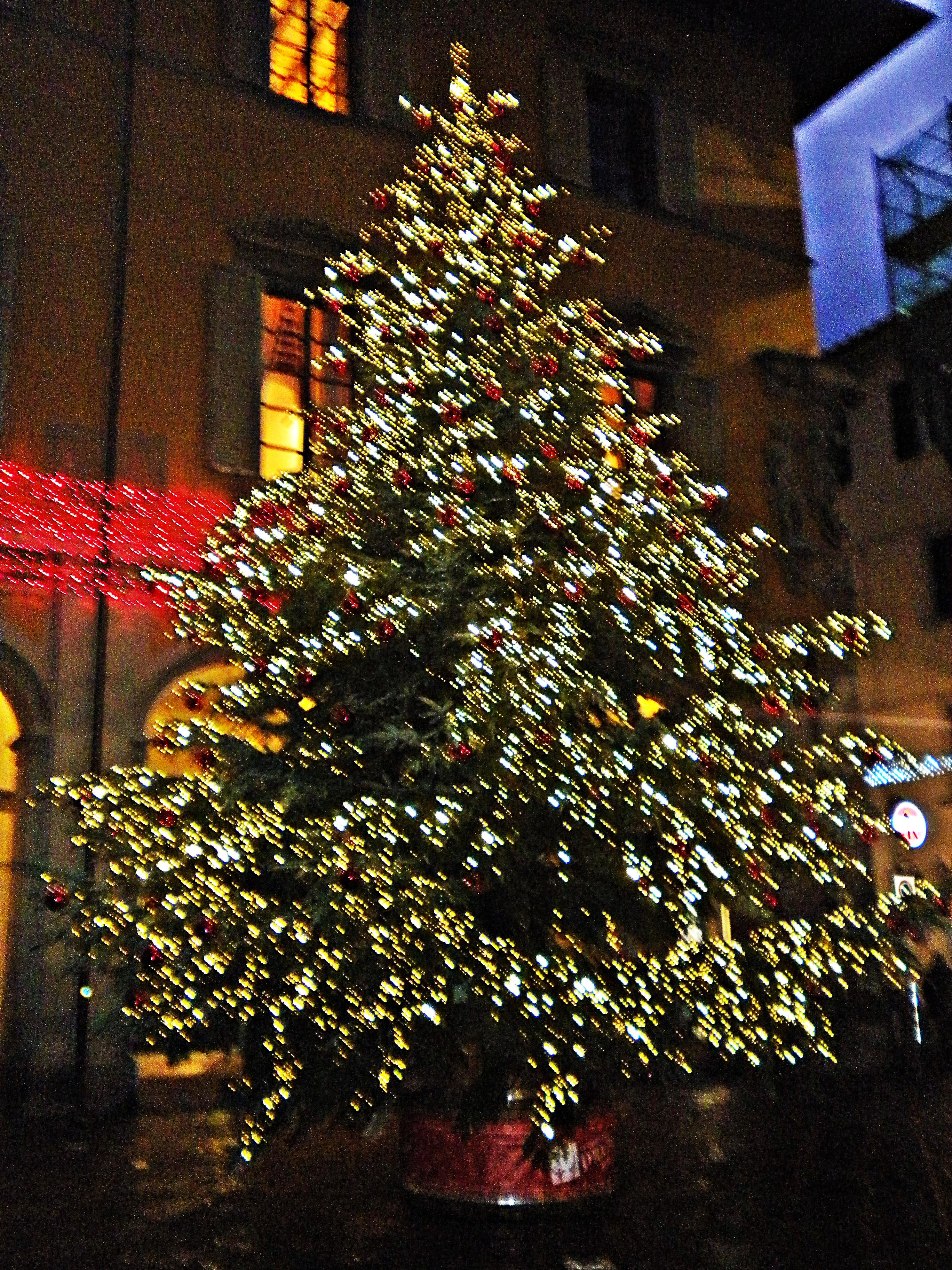 Albero Di Natale Wikipedia.File Albero Di Natale Piazza Del Comune Jpg Wikimedia Commons
