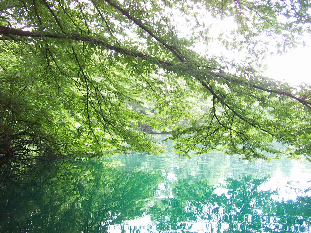 Kabardino-Balkaria. Blue Lakes where are located 10