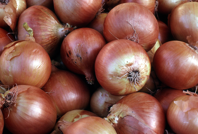 Https Www Onions Usa Org Onionista Secret Chocolate Cake