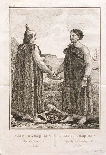 Callicum und Maquinna.jpg