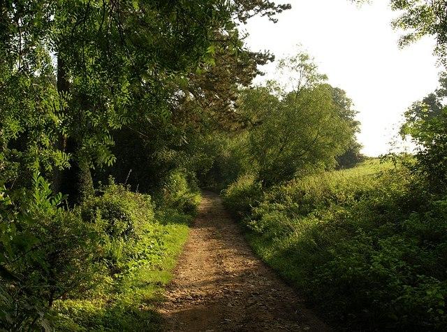 Cotswold Way at Salterley Grange - geograph.org.uk - 976712