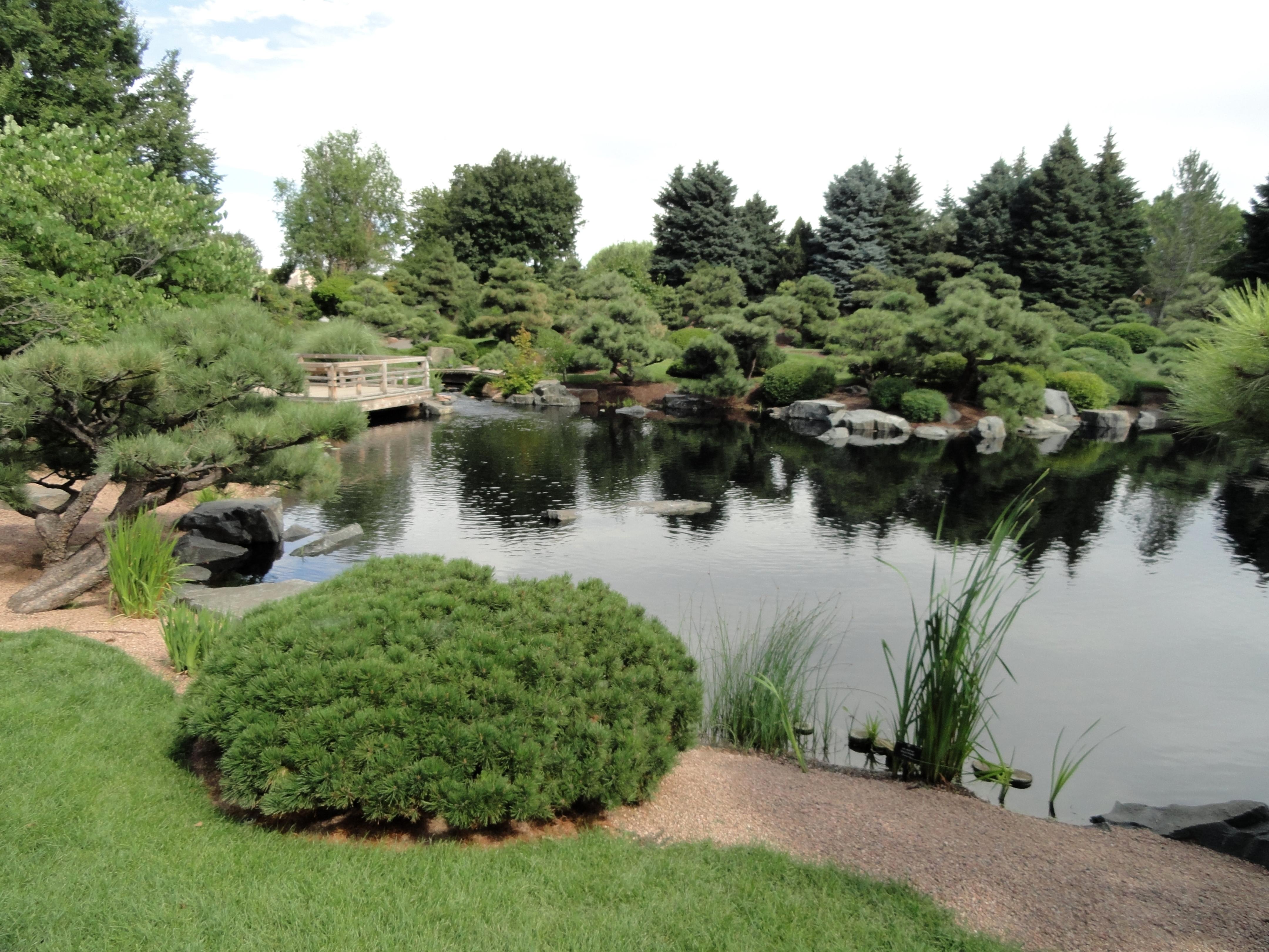 File Denver Botanic Gardens Dsc00988 Jpg Wikimedia Commons