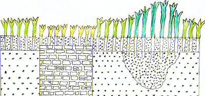 Schema delle differenze di crescita nella vegetazione in corrispondenza di resti sepolti