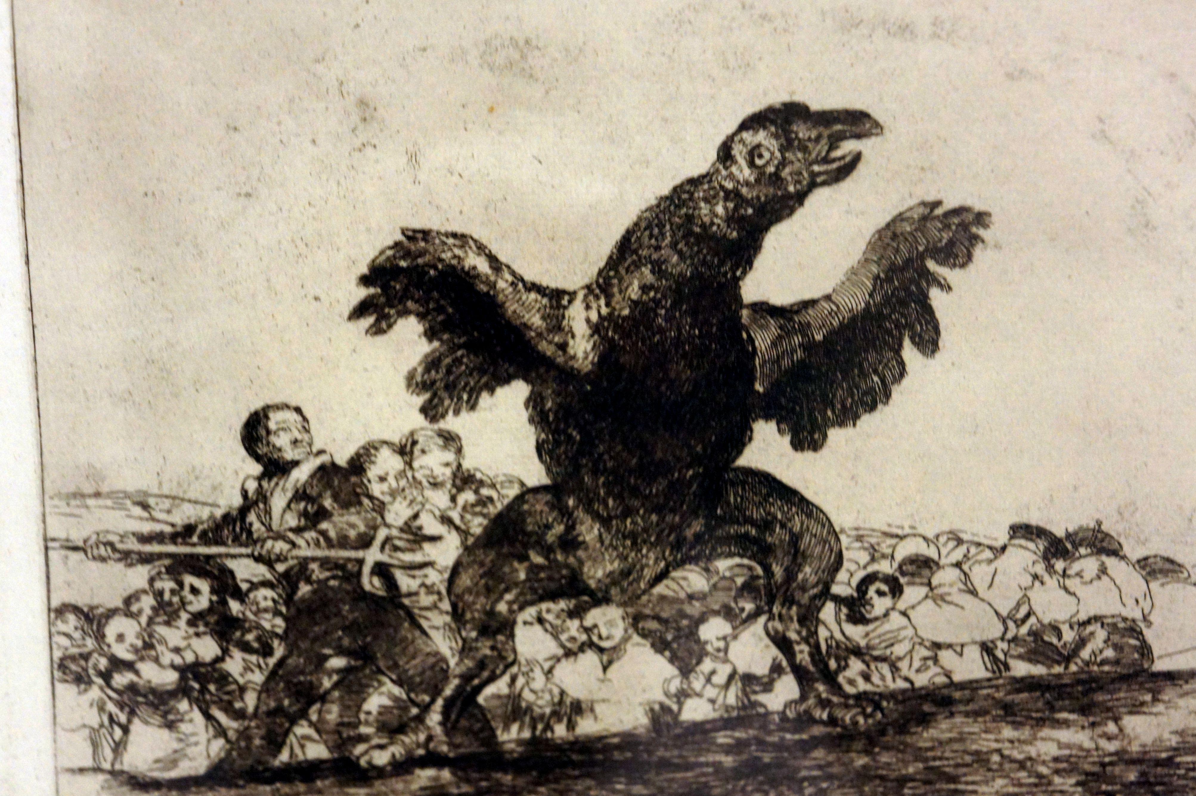 El buitre carnívoro - Wikipedia, la enciclopedia libre