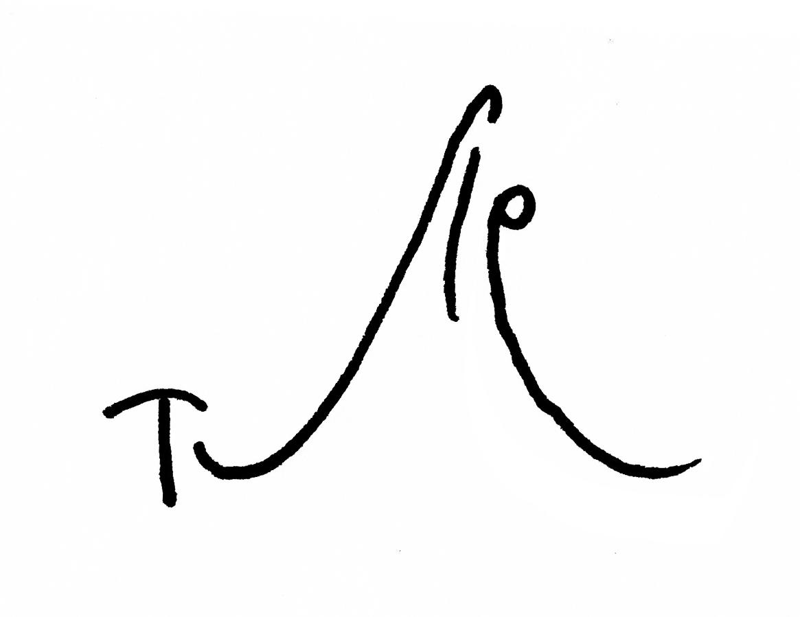 Firma de Tute