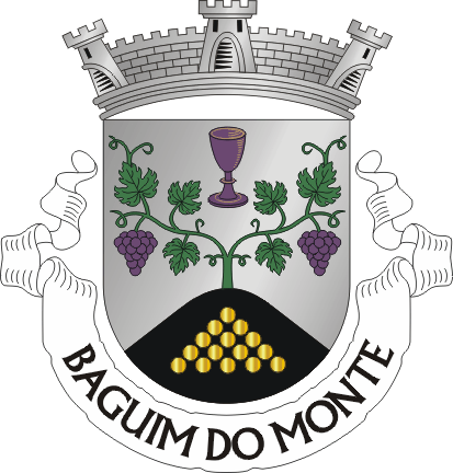 Baguim do Monte City