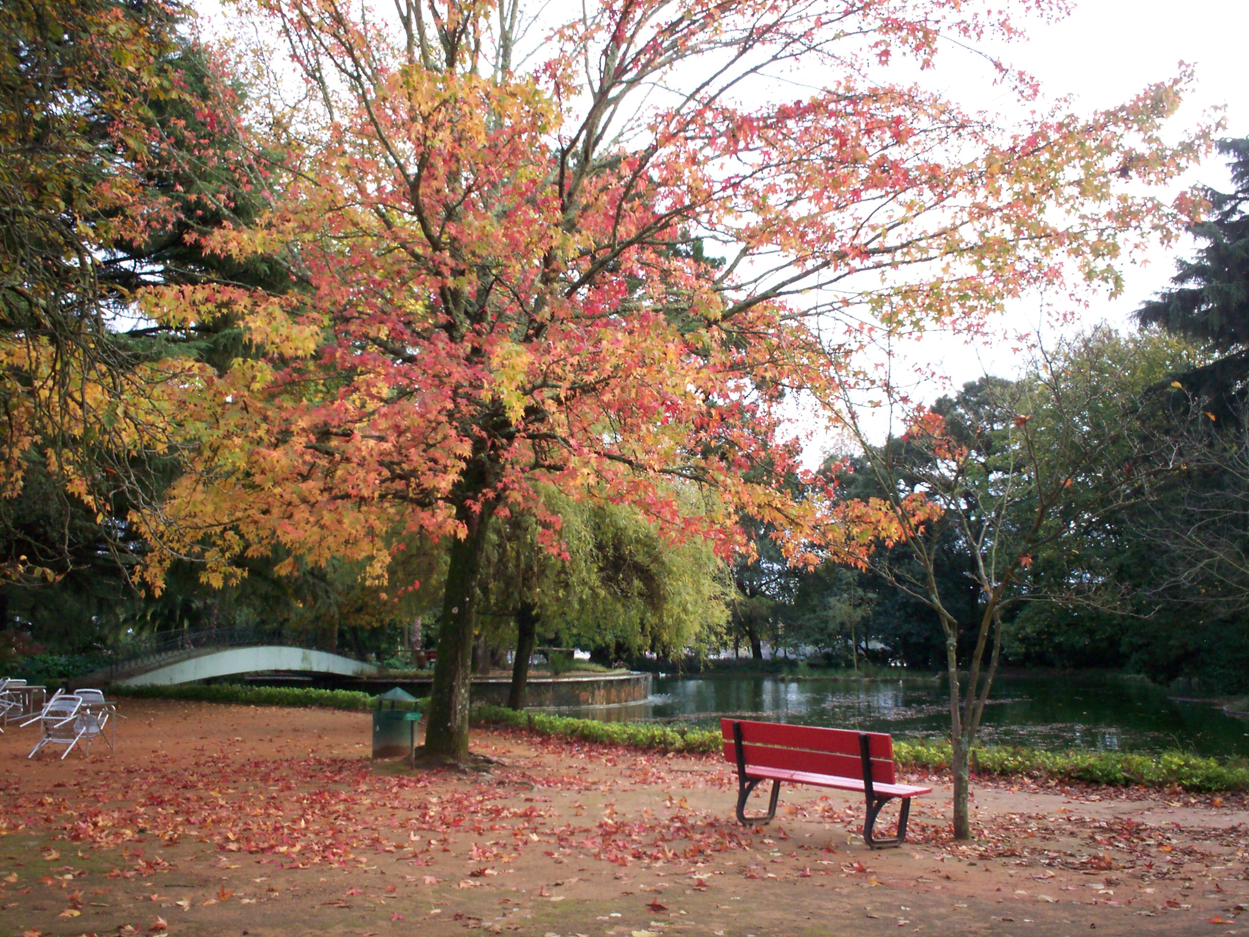 File jardins pal cio de wikimedia commons for Jardines del palacio de cristal oporto