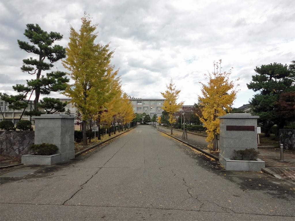 小杉高等学校