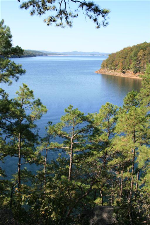 Beaver Lake Fishing Tours