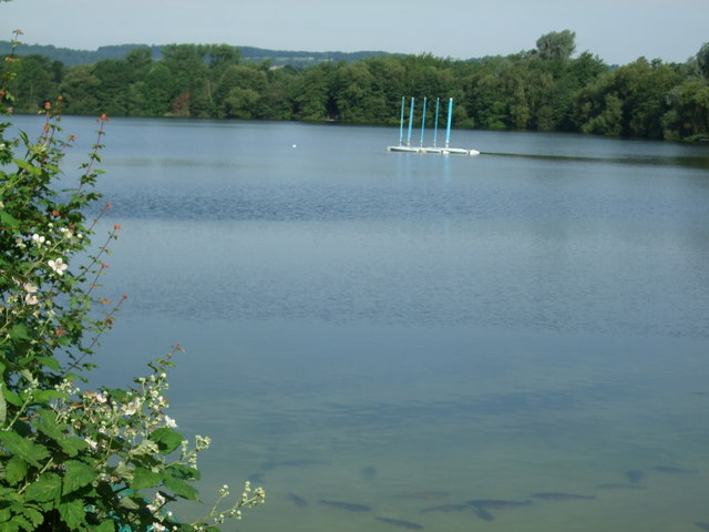 Lake in Mercers Country Park - geograph.org.uk - 847947