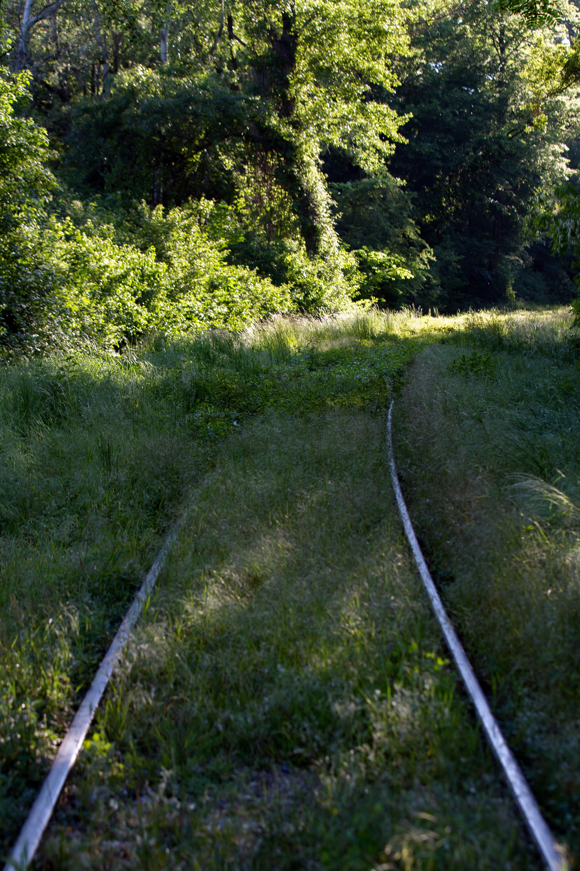 Filelobau Anschlussstrecke ölhafenbahn Mai 2016 Ajpg Wikimedia
