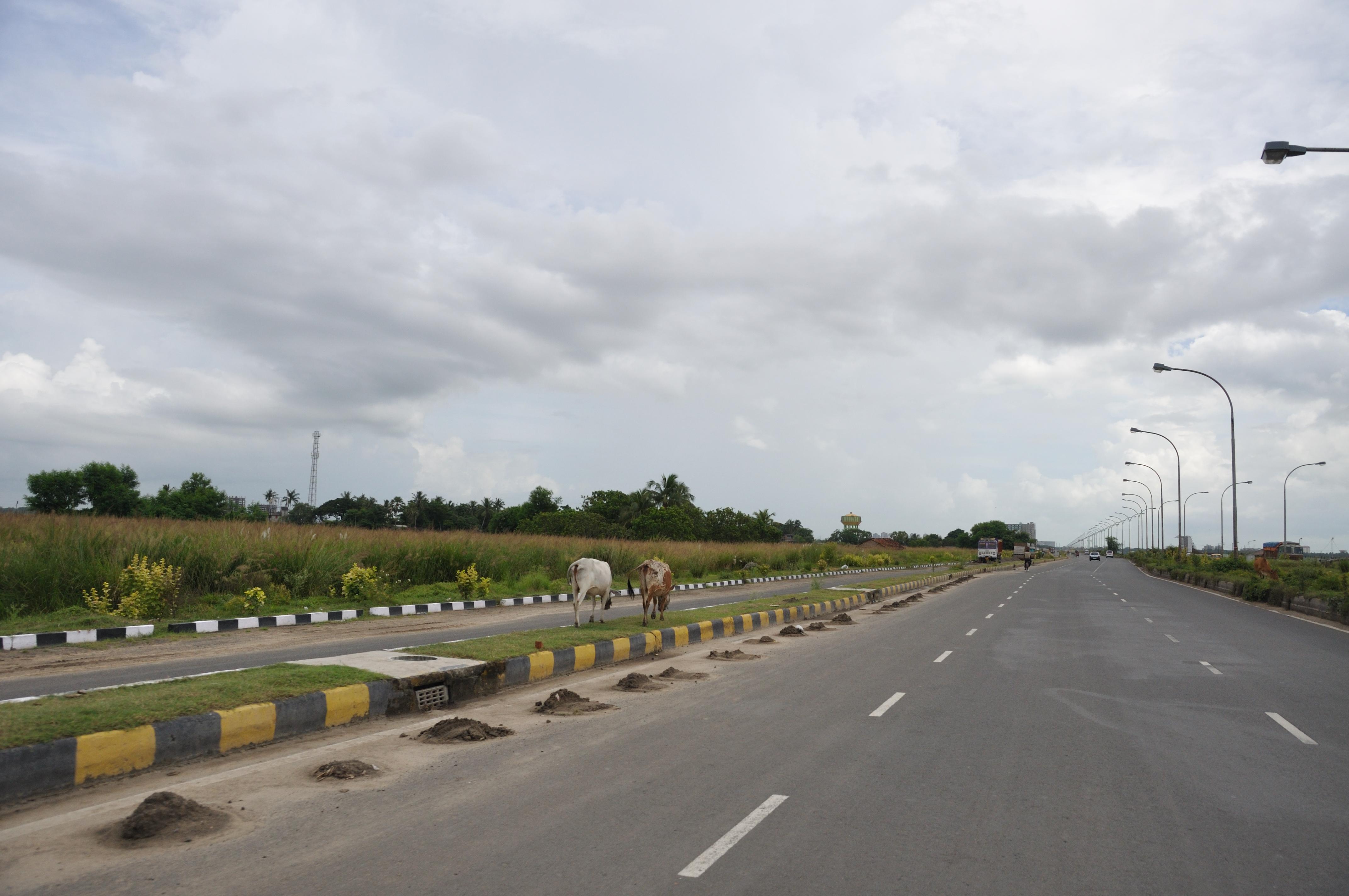 Major Arterial Road - Rajarhat 7490.JPG