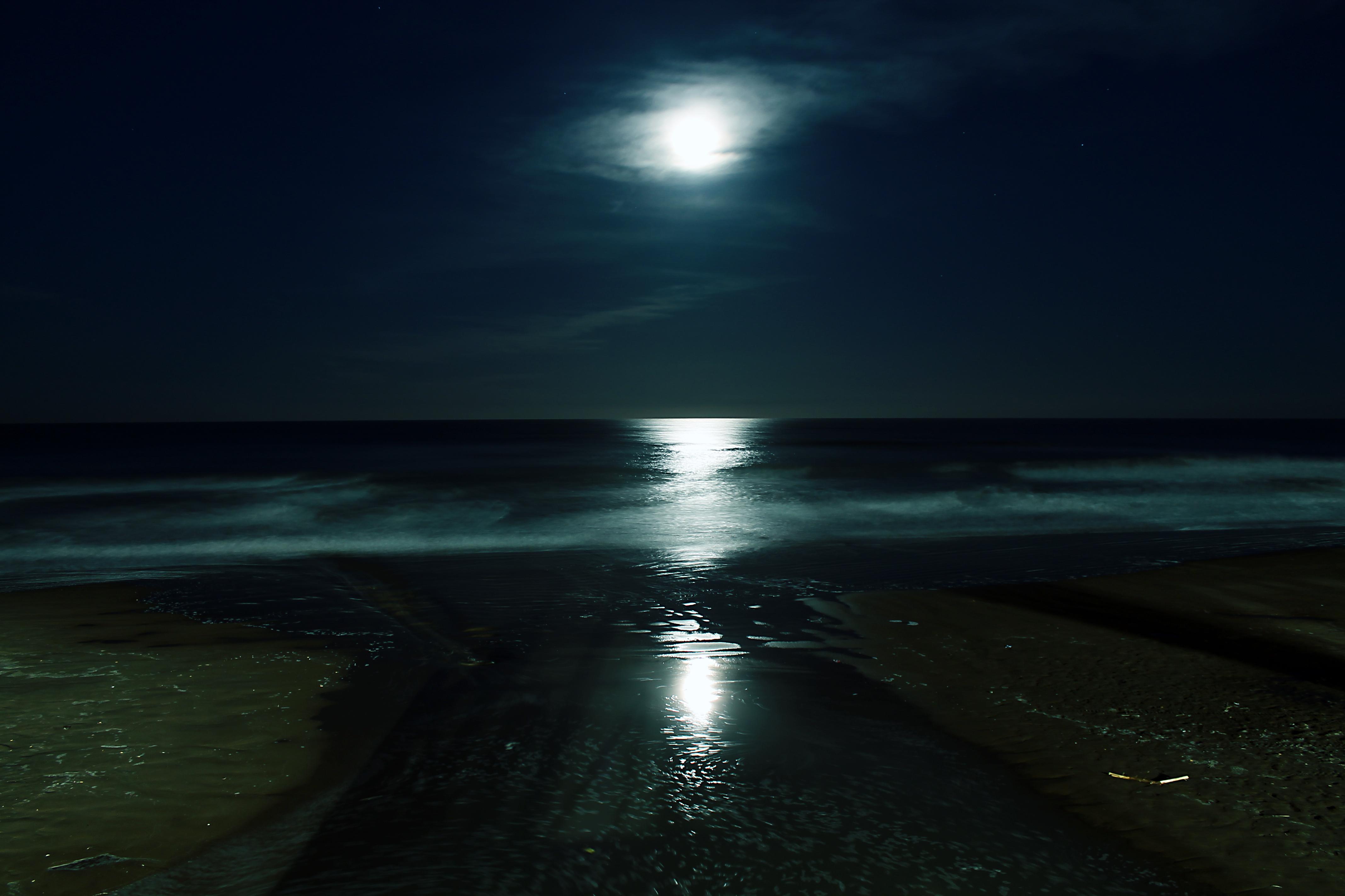 Noche Images - Reverse...