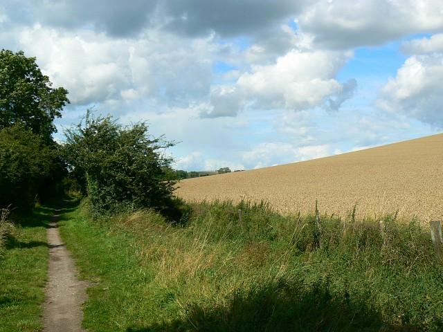 North along the MandSWJR trackbed, Ogbourne Maizey - geograph.org.uk - 922435