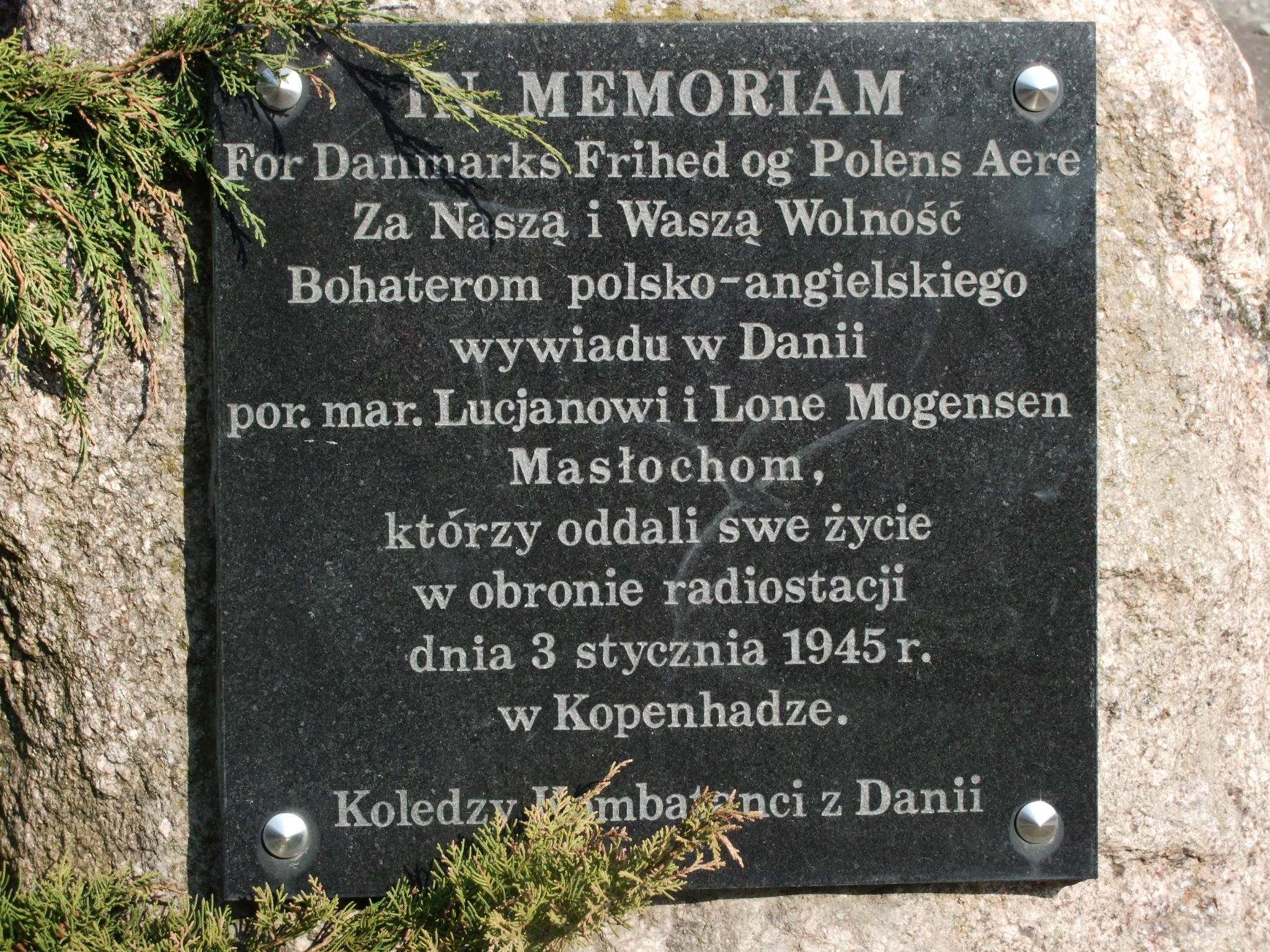 File:Plaque Lucjan Masłoch and Lone Mogensen Masłoch, Łódź Masłochów  Street.jpg - Wikimedia Commons