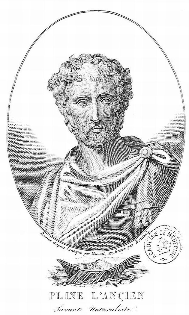 Pliny the Elder - Wikipedia, the free encyclopedia