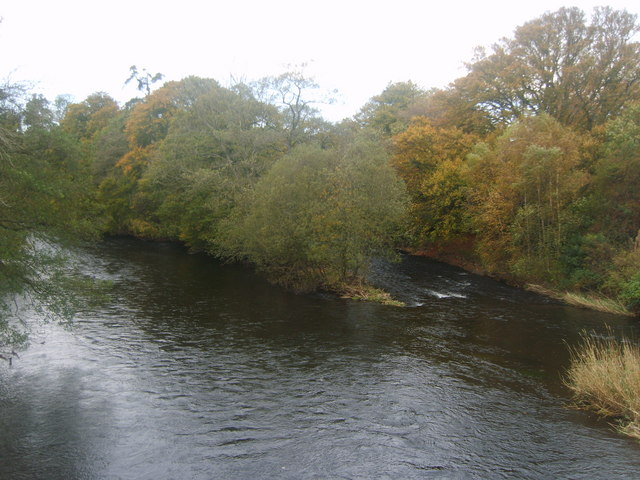 File:River Derwent - geograph.org.uk - 1549313.jpg