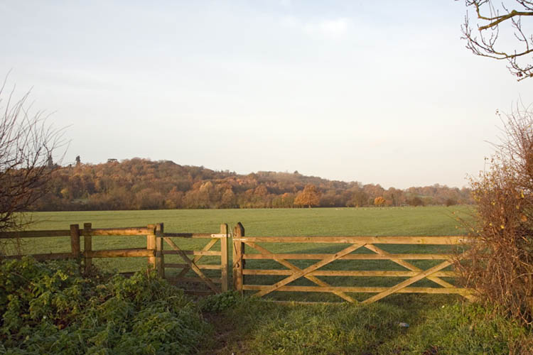 View of Runnymede Meadow from Engham Village -- Wyrdlight photo through Wikimedia