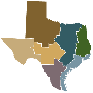 State of Texas Regions