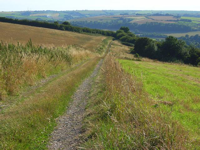 The Wessex Ridgeway, Maiden Newton - geograph.org.uk - 908391