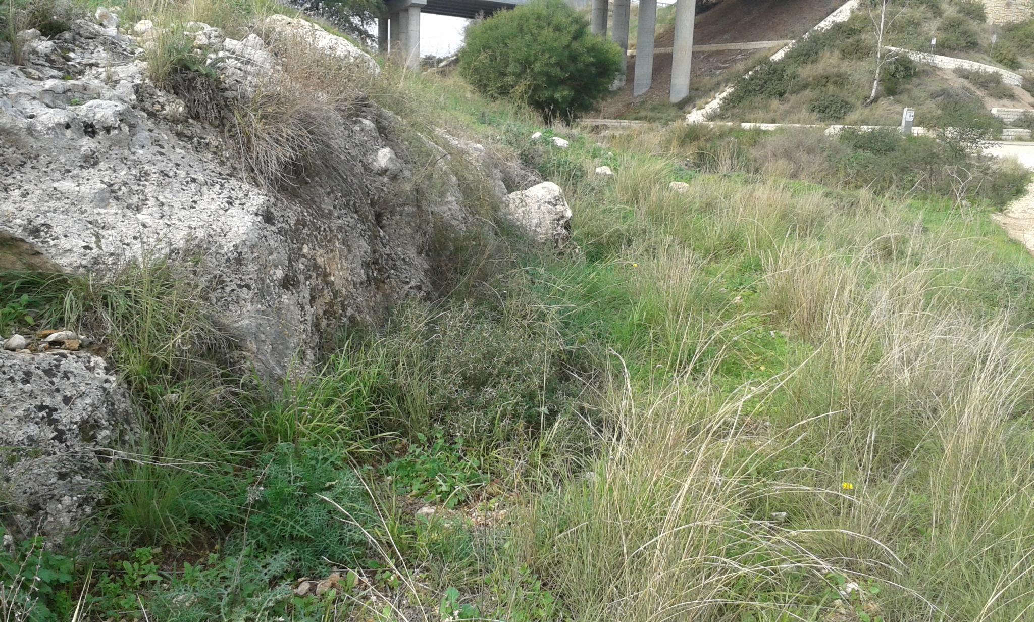 File The Train To A Luban Embarkment Toward The Bridge Under Road