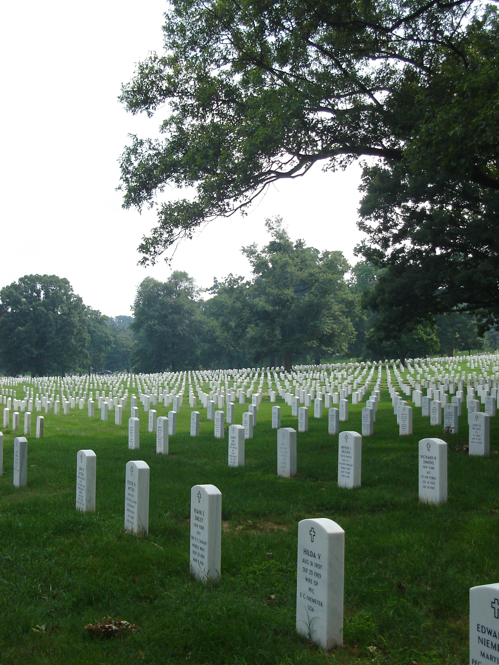 photo of headstones at Arlington National Cemetary