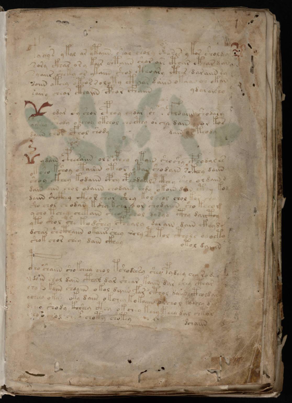 Скачать книгу орден манускрипта