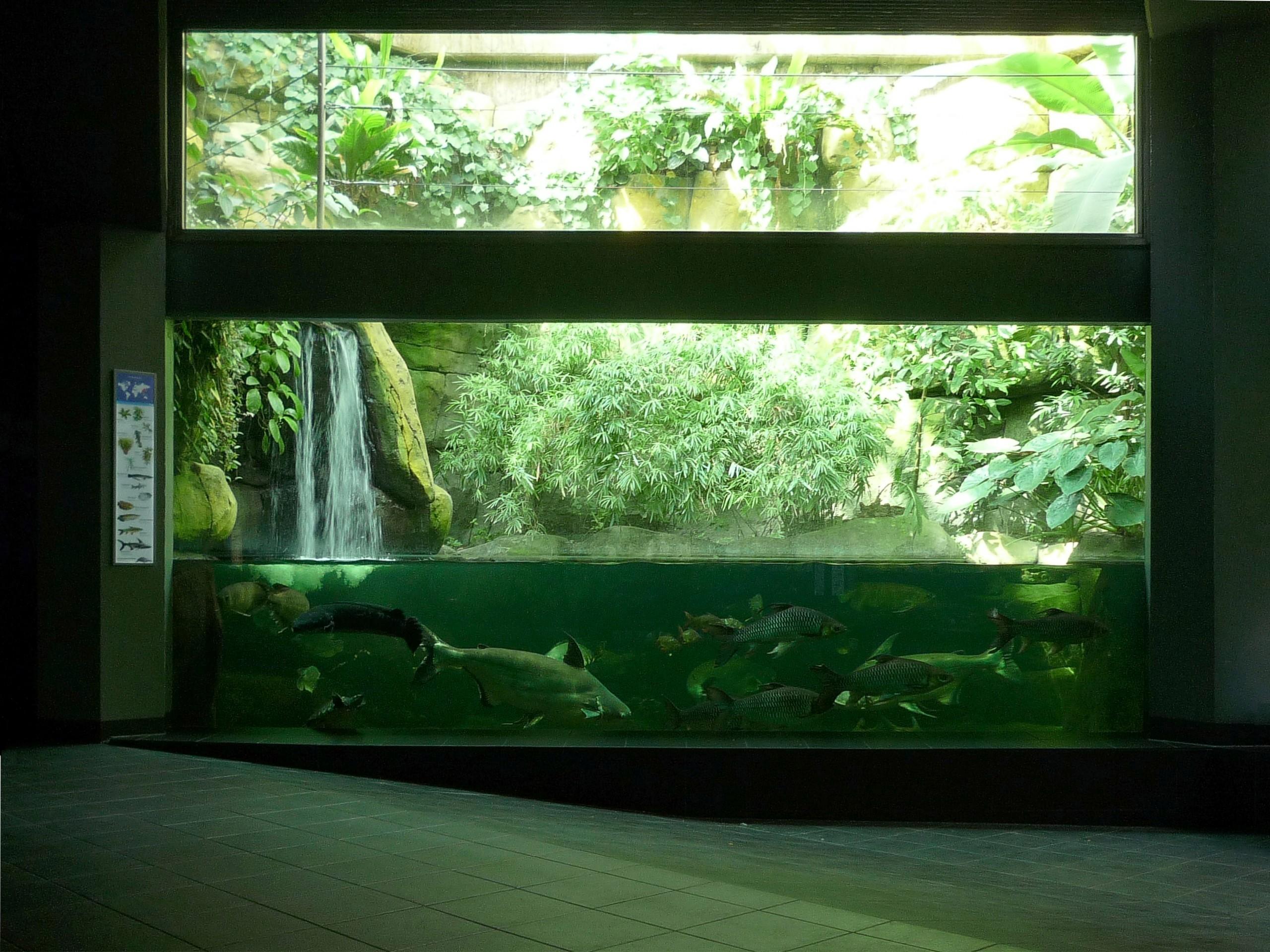 aquarium zoo