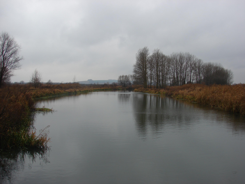 Куда течет река сосна схема фото 337