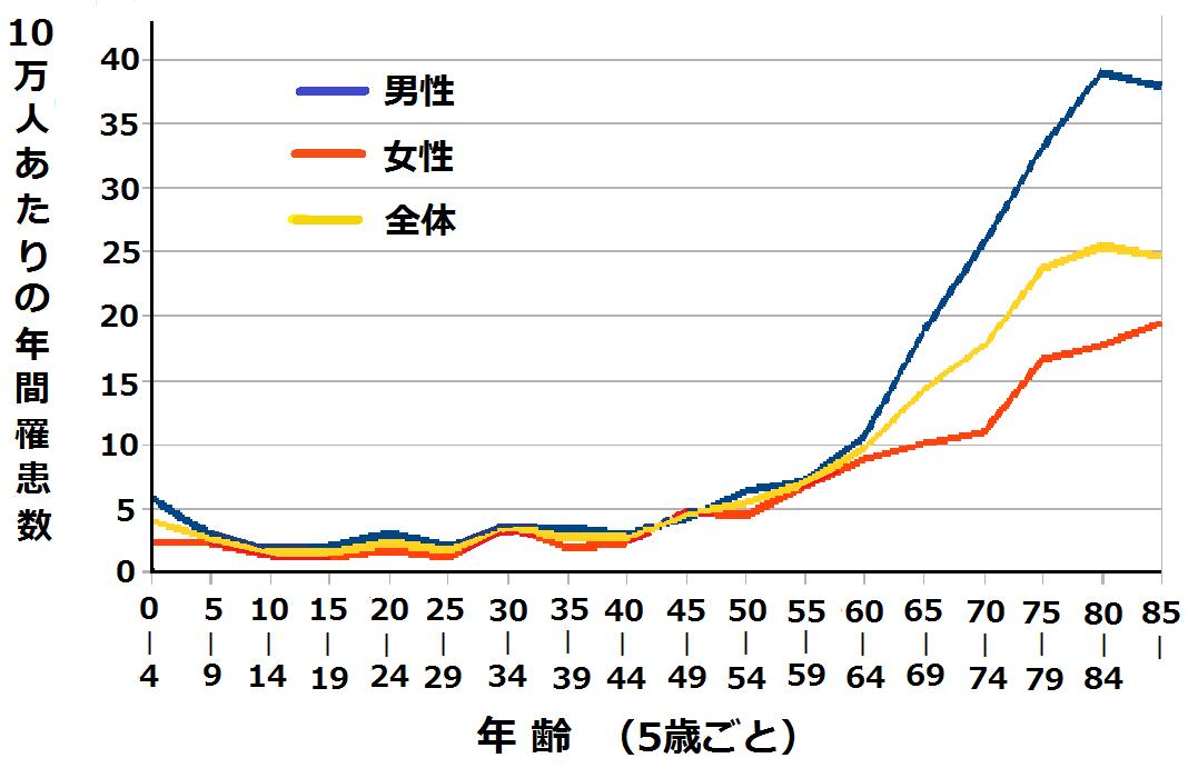 年齢別性別白血病発症率2005.png