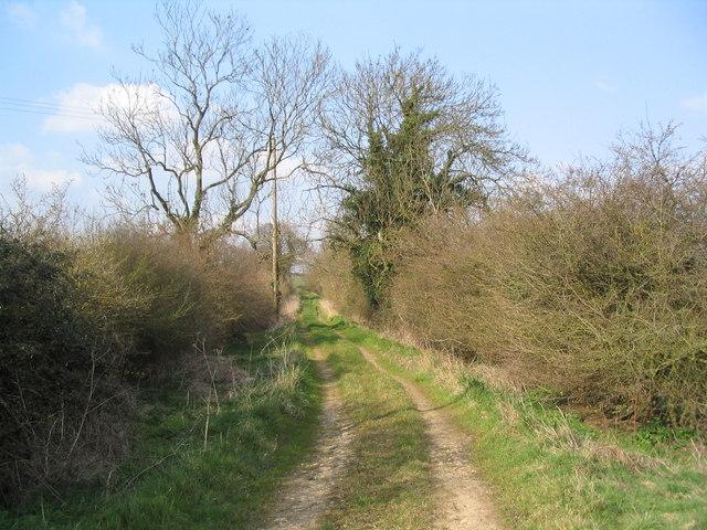 Bridleway north to Fermyn Woods - geograph.org.uk - 378595