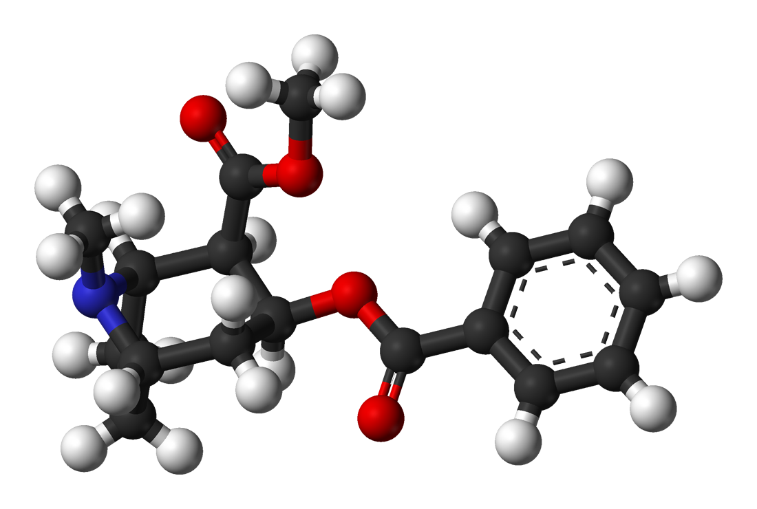 Wikipedia Kokain
