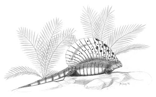 http://upload.wikimedia.org/wikipedia/commons/3/38/Edaphosaurus-cruciger_jconway.jpg