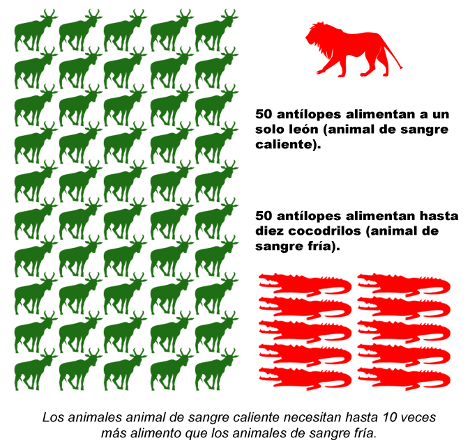Sangre Caliente Wikipedia La Enciclopedia Libre
