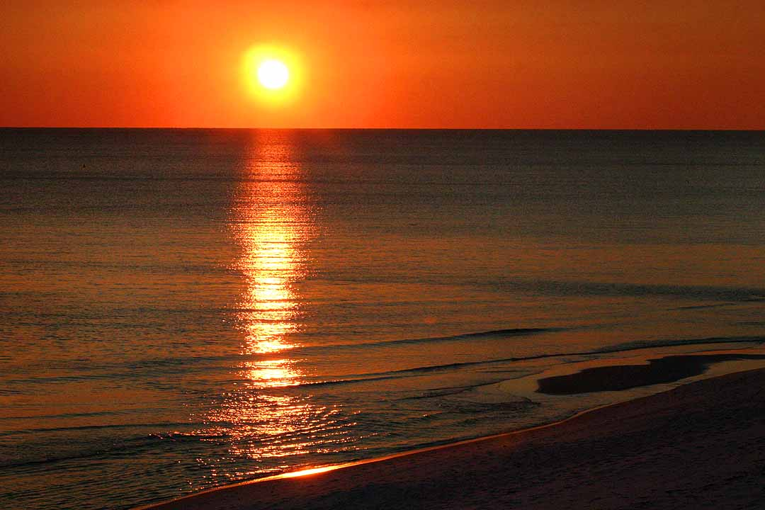 Florida Gulf Coast Apartments Tampa Fl