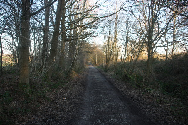 Forest Way - geograph.org.uk - 1691907