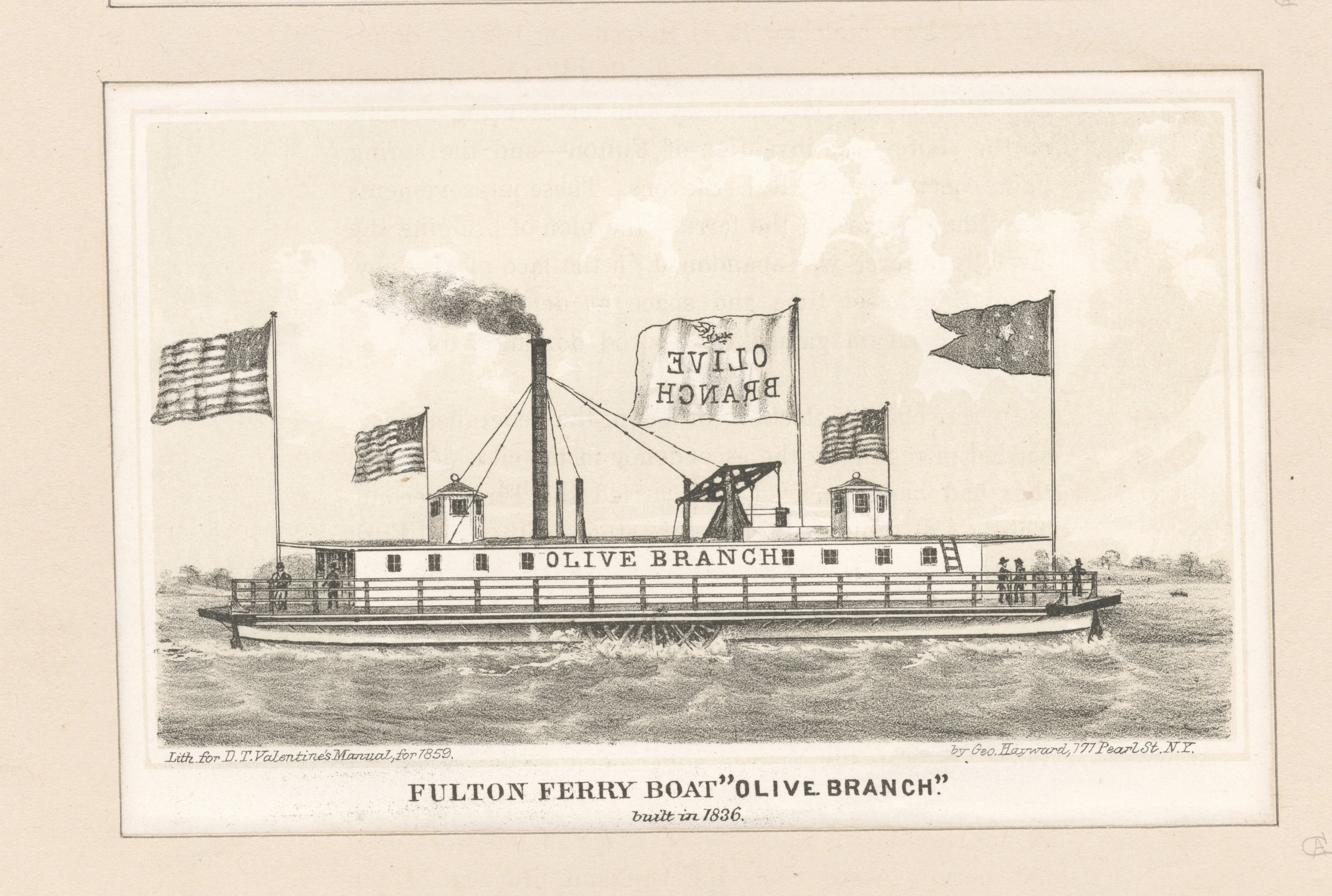 Image result for fulton ferry olive branch