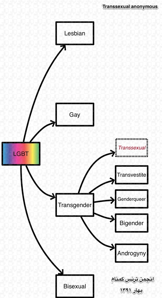 Flow Chart Color Meaning: Lgbt chart.jpg - Wikimedia Commons,Chart